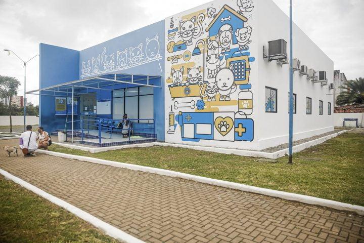 Hospital Veterinário do Recife abre mil vagas para castrações gratuitas de cães e gatos em outubro; saiba como realizar o agendamento