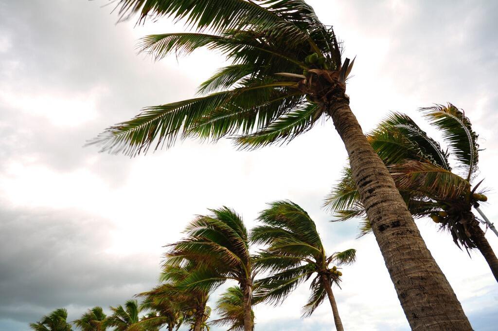 Marinha emite alerta para ventos de até 60 km/h e ondas de 3,5 metros em Pernambuco